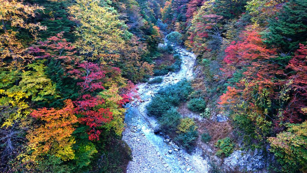 高瀬渓谷の紅葉