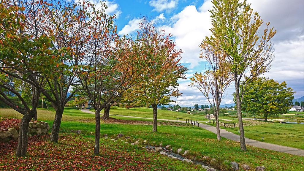 安曇野ちひろ美術館の色づき始めた木々
