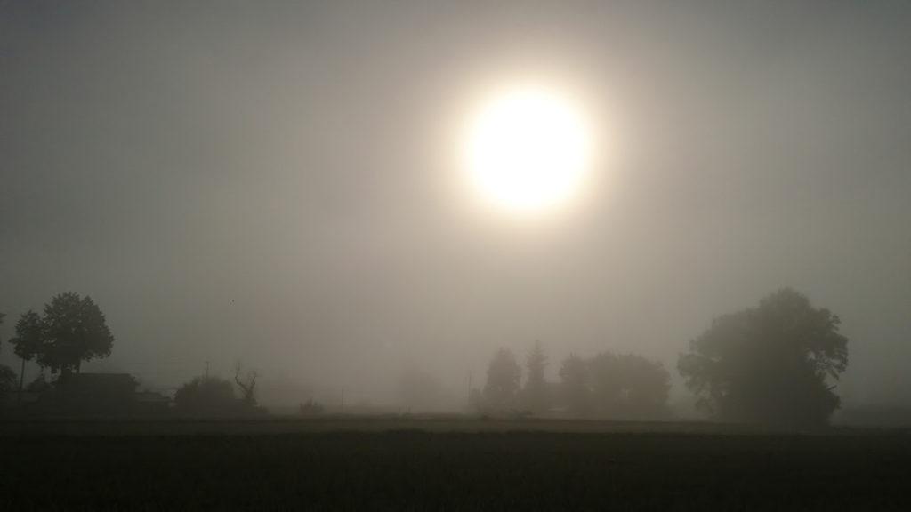 霧の朝の幻想的な風景