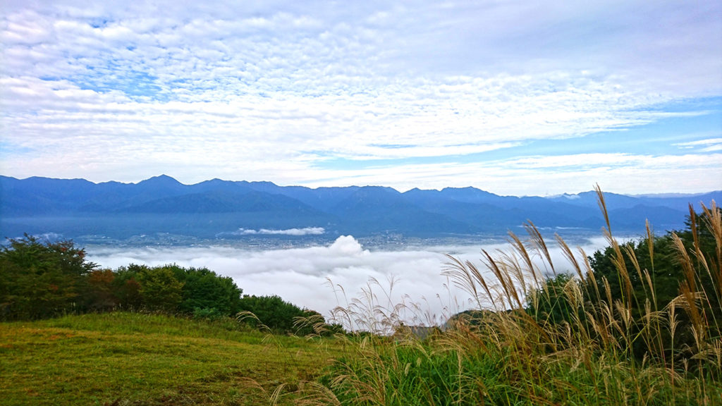 長峰山頂からの雲海とススキ