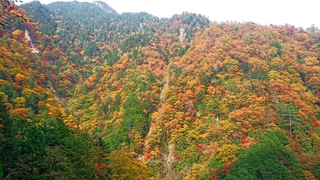 中房渓谷紅葉2