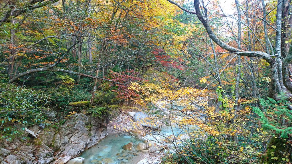 中房橋付近の紅葉