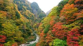 高瀬渓谷の紅葉1