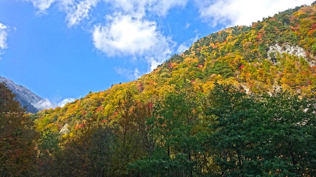 高瀬渓谷七倉の紅葉