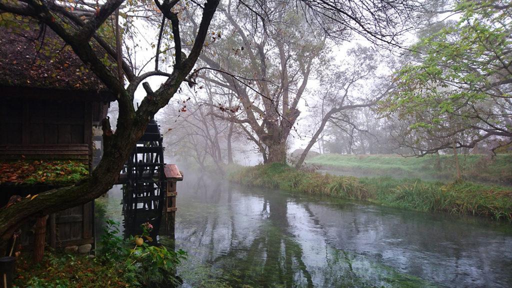 霧に包まれる大王わさび農場水車小屋2