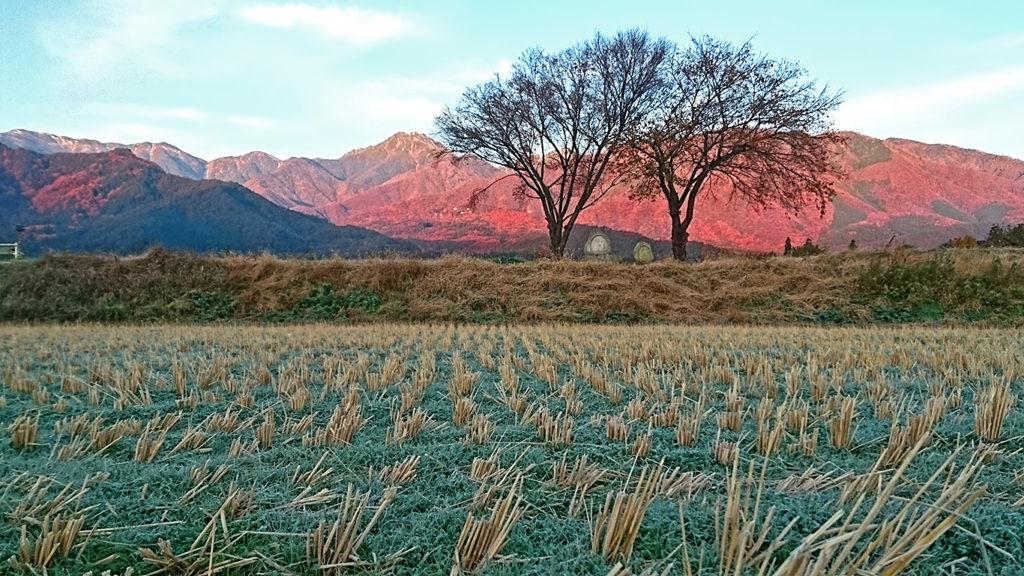 常念道祖神前の霜の降りた田んぼと赤く染まる常念岳
