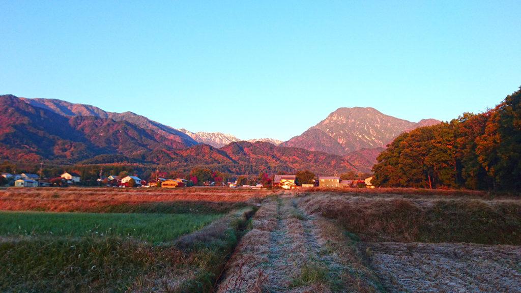 霜が降りた田んぼの畦道と有明山