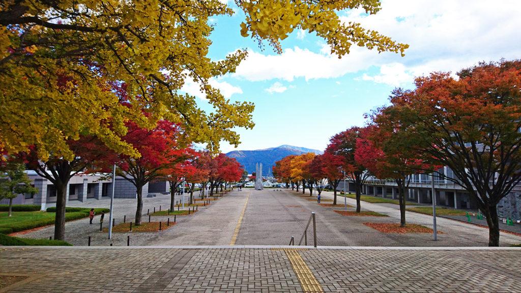 松本市総合体育館とキッセイ文化ホールの間の紅葉