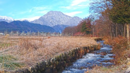枯草に氷柱が下がるようになってきた油川と有明山