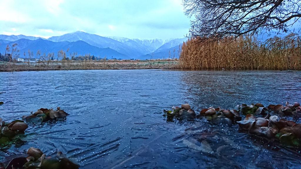 氷が張った久保田公園の池