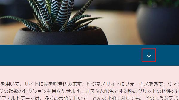 Twenty Seventeen SVGアイコン 1
