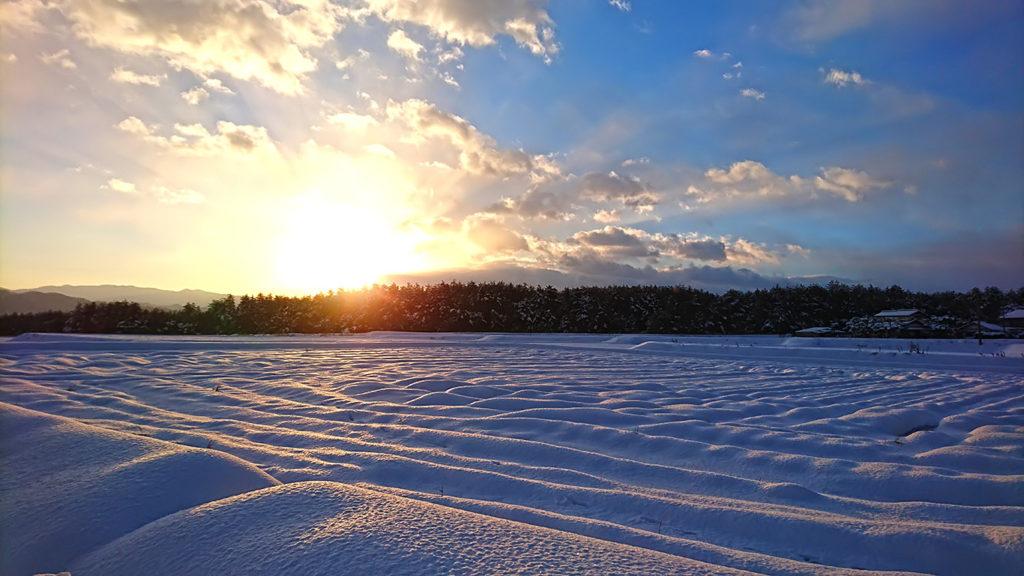 ちろりん村横から松林から昇る朝日を雪原と