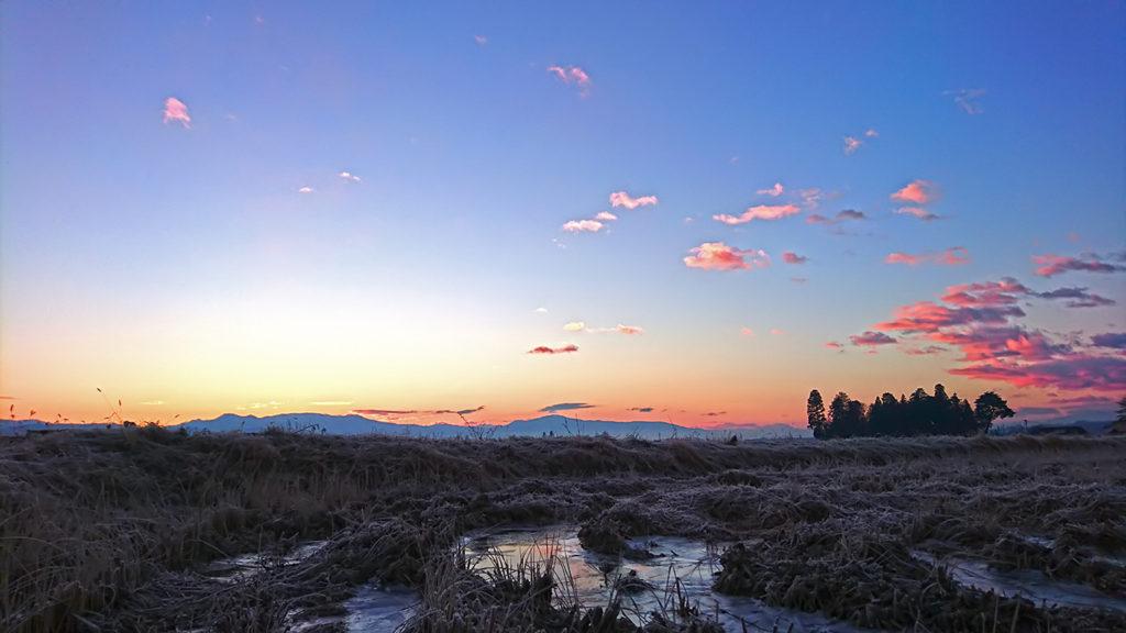 初日の出直前のピンクに染まる東の空