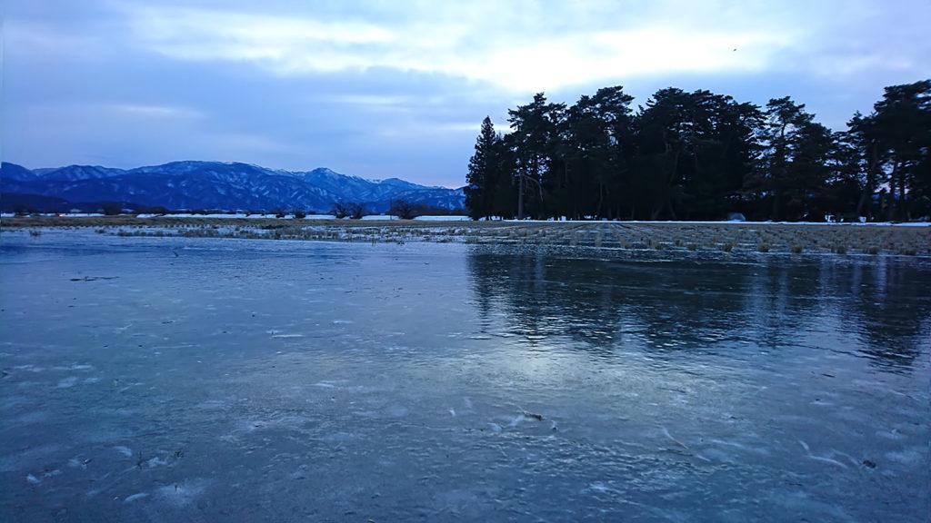 全面結氷していた田んぼ。