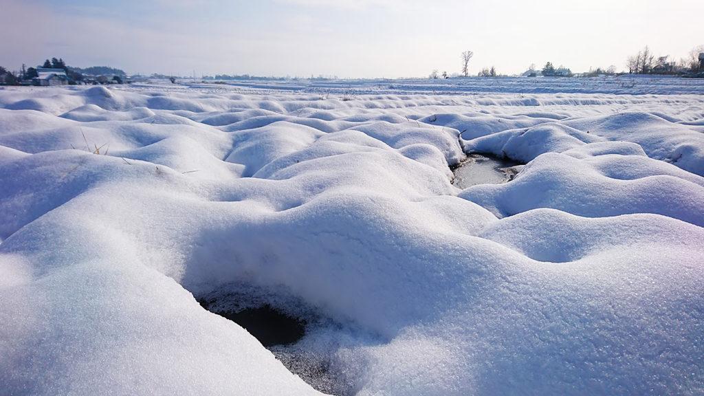 田んぼと畑の雪原3