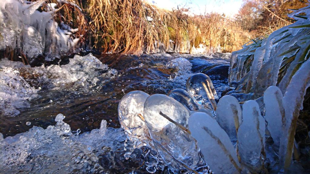 油川の真空管のような氷