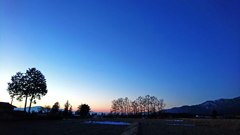 カラマツと夜明けの風景