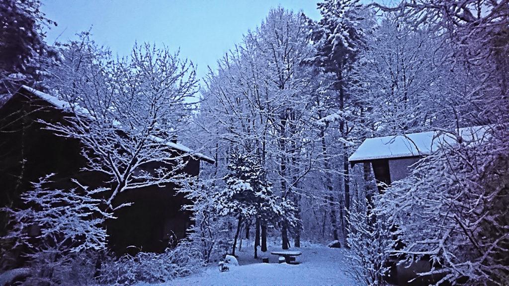 早朝の学者村の雪景色
