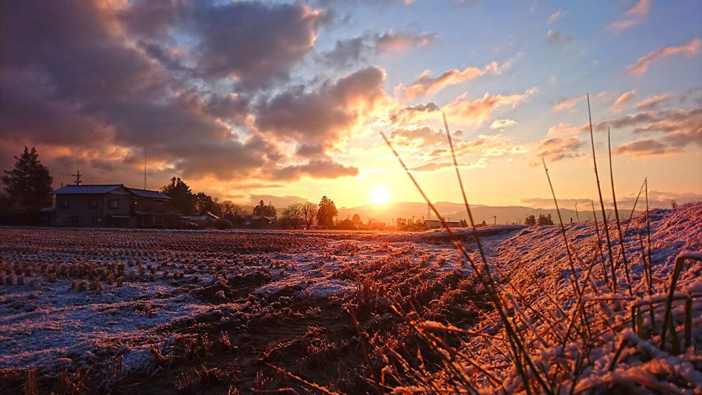 日の出頃の朝日を浴びる雪化粧した田んぼ