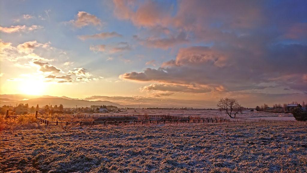 日の出頃の豊里界隈から見る田んぼの雪原
