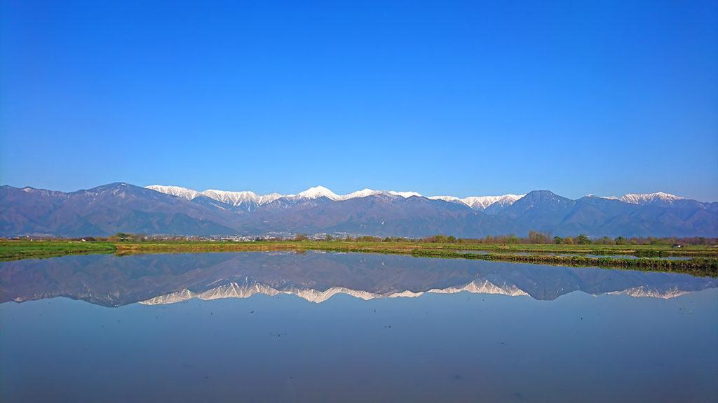 田んぼの水鏡2