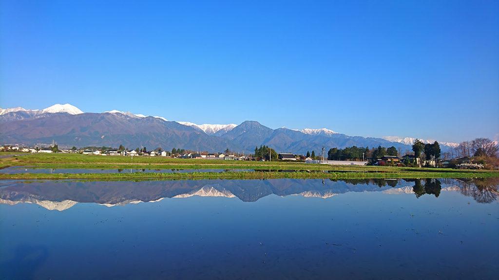 田んぼの水鏡4