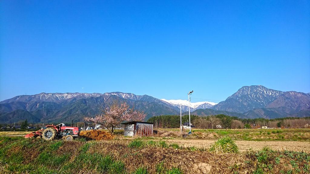 赤いトラクターと桜と有明山