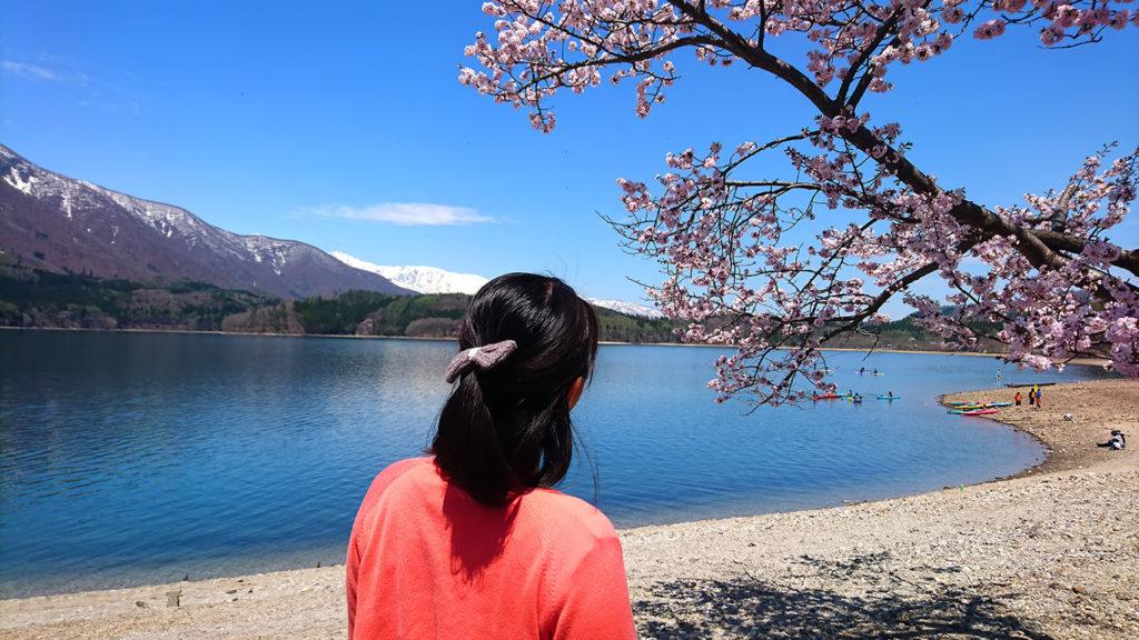 春の青木湖と桜と嫁さんの後姿