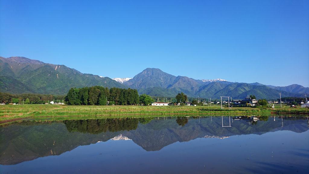 田植え前の田んぼの水鏡