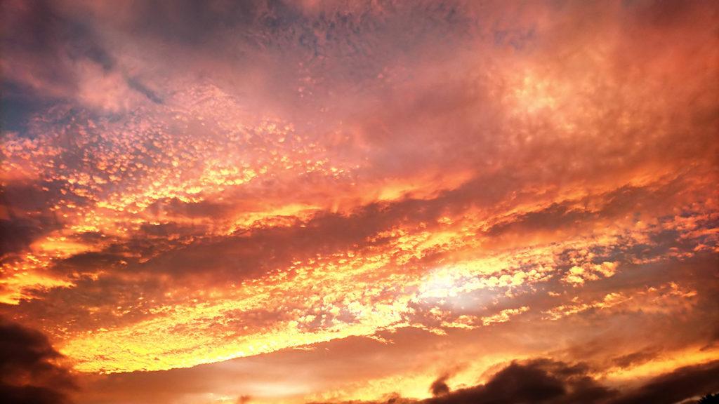 黄金色に染まるうろこ雲