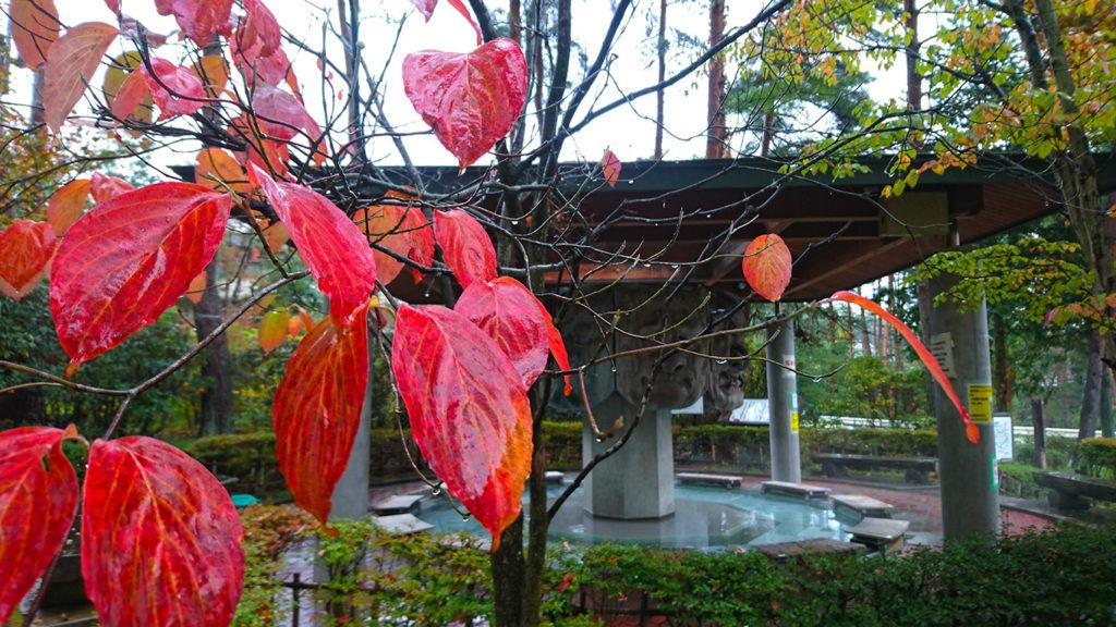 紅葉を手前に八面大王の足湯を