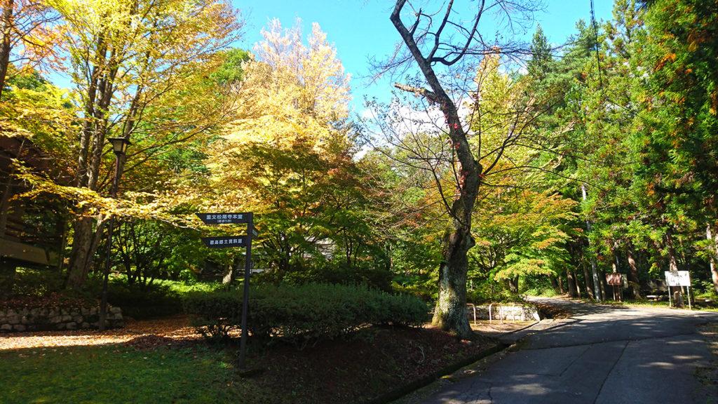 紅葉の始まった鐘の鳴る丘集会所2