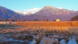 凍った田んぼと有明山