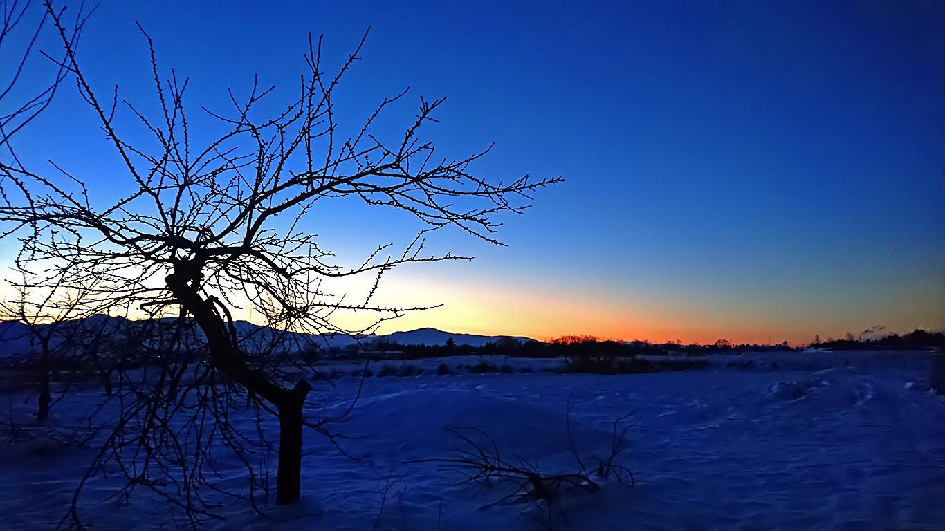 雪原から見る夜明け