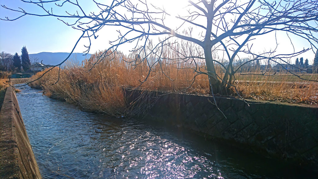 用水路の水面の輝き