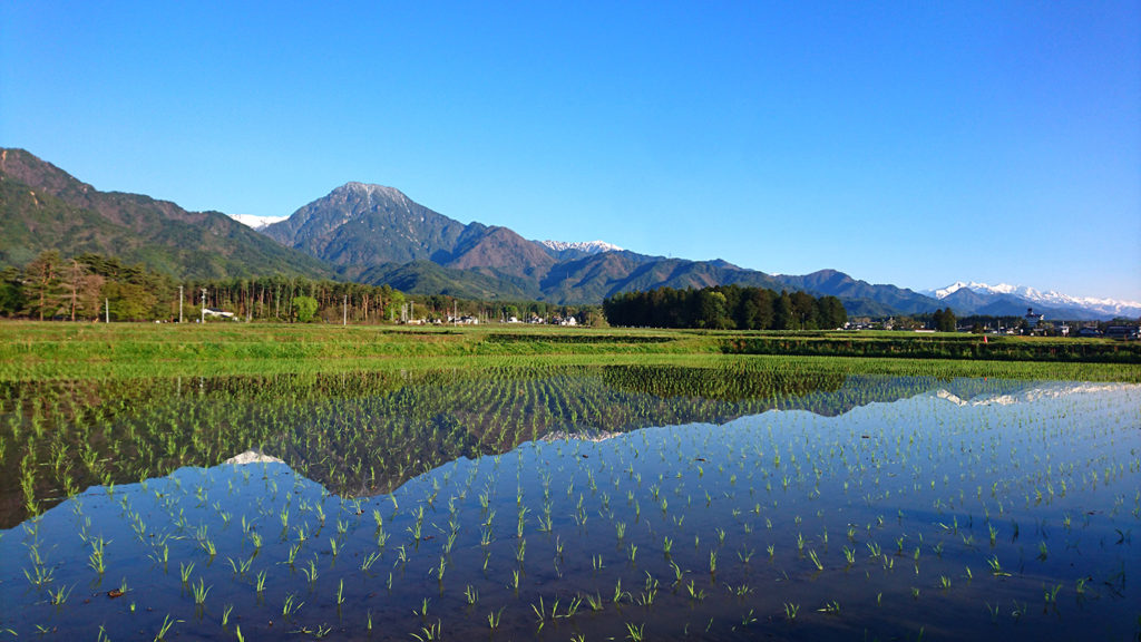 有明山と田んぼの水鏡