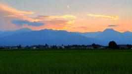 夕暮れ時の田んぼと常念岳と有明山